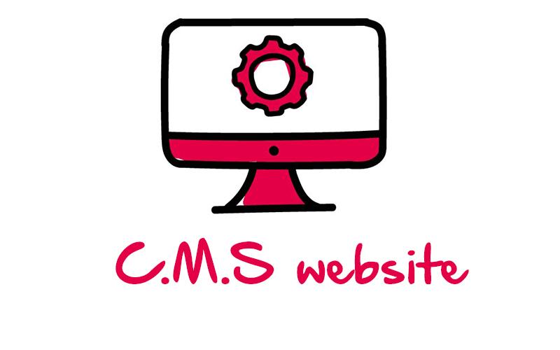 C.M.S website
